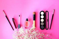 La disposizione dei cosmetici su un fondo rosa con un ramo di una pianta decorativa fotografie stock