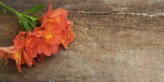 La disposizione dei fiori arancio rossa di Astromeria di Alstroemeria sopra il piano di legno rustico della Tabella pone lo spazi Fotografia Stock