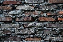 La disposizione dei mattoni rossi ricoperti di cemento bianco immagine stock libera da diritti