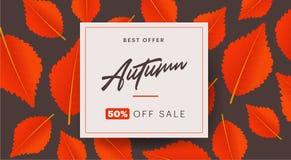 La disposizione del fondo di autunno decora con le foglie per l'opuscolo di compera di vendita o del manifesto e della struttura  Immagini Stock