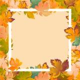 La disposizione del fondo di autunno decora il manifesto di compera di vendita o di promo delle foglie e l'opuscolo bianco della  illustrazione di stock