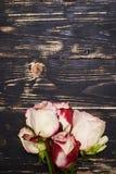 La disposizione piana ha sparato di un mazzo di piccole rose variopinte Immagine Stock