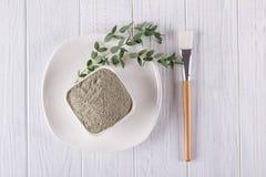 La disposizione piana, l'ingrediente naturale della polvere del fango dell'argilla per il facial casalingo ed il corpo mascherano immagine stock