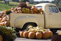 La distribution d'automne Image libre de droits