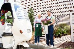 La distribution de fleur images stock