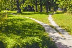 La divergence des chemins dans différentes directions en parc Paysage d'ÉTÉ photo stock