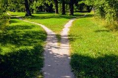 La divergence des chemins en parc, le paysage d'été photo stock