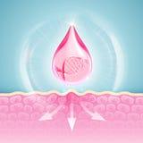 La DNA protege la solución del colágeno Tratamiento de Skincare stock de ilustración