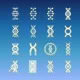 La DNA tuerce en espiral los iconos del vector - medicinales y los iconos de la biología fijados libre illustration