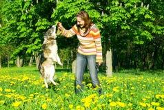 La donna è addestramento del cane Fotografia Stock Libera da Diritti