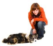 La donna è addestramento del cane immagini stock