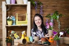 La donna è impegnata nella piantatura dei fiori fotografia stock