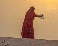 La donna alimenta i pesci nel lago santo in Pushkar Immagine Stock