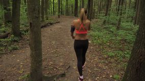 La donna atletica va tranquillamente lungo un sentiero forestale, vestito per pareggiare stock footage