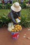 La donna cambogiana vende la frutta Immagine Stock Libera da Diritti