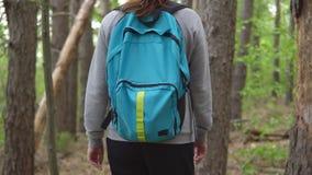 La donna castana con uno zaino cammina attraverso la foresta stock footage