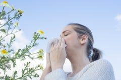 La donna che starnutisce in una margherita fiorisce il prato Fotografie Stock