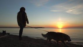 La donna con un cane sulla spiaggia Un declino al mare stock footage