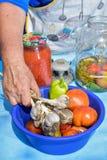 La donna conserva le verdure Fotografia Stock