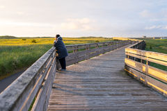 La donna contiene il momento momentaneo del tramonto fotografie stock libere da diritti