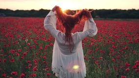 La donna dai capelli rossi getta i suoi capelli sullo stare nel campo dei papaveri nei raggi del tramonto, movimento lento archivi video