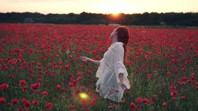 La donna dai capelli rossi getta i suoi capelli sullo stare nel campo dei papaveri nei raggi del tramonto, retrovisione video d archivio