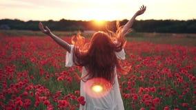 La donna dai capelli rossi getta i suoi capelli sullo stare nel campo dei papaveri nei raggi del tramonto, retrovisione stock footage