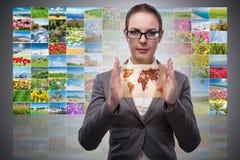 La donna di affari con collage delle foto della natura Fotografie Stock