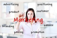 La donna di affari scrive sull'introduzione sul mercato dello schermo. Immagine Stock Libera da Diritti