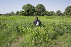 La donna di Nubian nei wlaks neri tradizionali del vestito comunque si inverdisce i campi fotografia stock