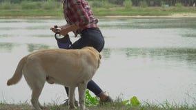 La donna e labrador della testarossa sta riposando vicino all'acqua stock footage
