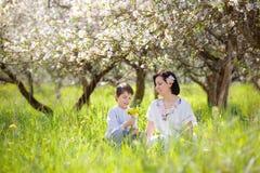 La donna ed il bambino felici nella mela di primavera fanno il giardinaggio Immagine Stock Libera da Diritti