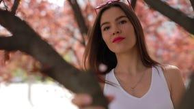 La donna felice nel parco della città gode di un giorno di estate vicino all'albero stock footage