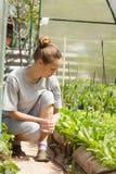 La donna fertilizza le piante da una lampadina di vetro Fotografie Stock Libere da Diritti