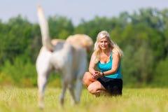 La donna gioca con un cane sul prato fotografia stock libera da diritti