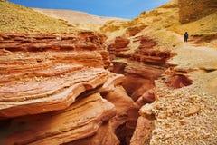 La donna - il turista va sul canyon rosso pittoresco Fotografia Stock