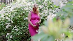 La donna incinta in vestito si tiene per mano sulla pancia su sfondo naturale di rododendro video d archivio