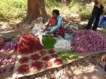 La donna indiana vende i peperoni di peperoncino rosso Fotografie Stock Libere da Diritti