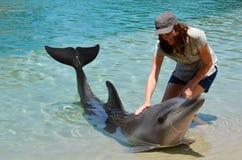 La donna interagisce con il delfino fotografia stock