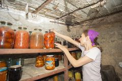 La donna mette a lungo i barattoli con le verdure ed i frutti nel seminterrato con alimento, per stoccaggio immagine stock