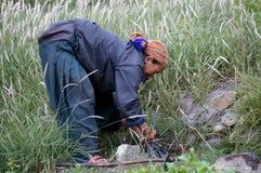 La donna nepalese lavora in un orto nel villaggio di Chusang nepal Immagini Stock