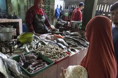 La donna non identificata sta vendendo i pesci Fotografia Stock