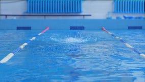 La donna nuota nella piscina video d archivio
