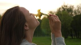 La donna odora i fiori del campo, fronte ed i denti di leone si chiudono su archivi video