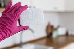 La donna passa i guanti protettivi d'uso e la tenuta della spugna di pulizia sul fondo bianco della cucina Concetto della cucina  immagini stock libere da diritti