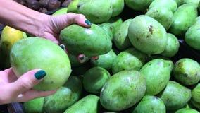 La donna passa il selezionamento del mango organico fresco nel supermercato acquisto di alimento video d archivio
