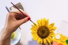 La donna passa la pittura Fotografie Stock Libere da Diritti