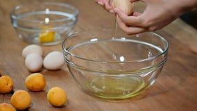 La donna passa la rottura dell'uovo per separare la chiara dell'uovo e tuorli e coperture dell'uovo ai precedenti video d archivio