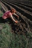 La donna prepara la terra per la piantatura con lo strumento dell'aratro in primavera org Fotografia Stock Libera da Diritti