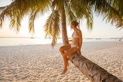 La donna riposa alla palma vicino all'oceano al tramonto Fotografia Stock